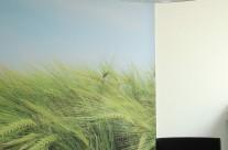 Umgestaltung von Empfangsflächen eines Firmenbüros